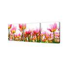 """Модульная картина на подрамнике """"Тюльпаны"""", 3 шт. — 50×50 см, 150x50 см"""