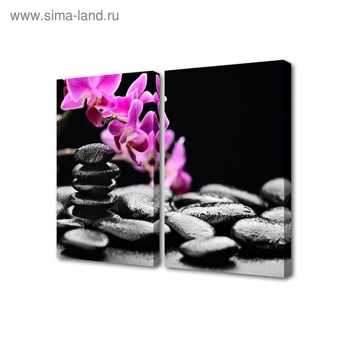 """Модульная картина на холсте с подрамником """"Орхидея у камней"""""""