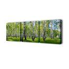 """Модульная картина на подрамнике """"Берёзовая роща"""", 50×50 см — 3 шт., 150×50 см"""
