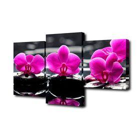 """Модульная картина на подрамнике """"Орхидеи на камнях"""", 26×50, 26×40, 26×32, 80×50 см"""