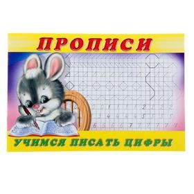 Раскраска-пропись «Учимся писать цифры»