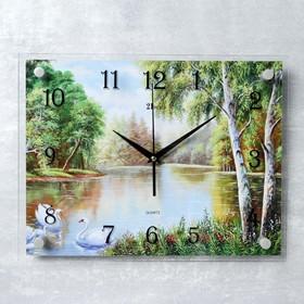 """Часы настенные, серия: Природа, """"Природа"""", 30х40  см, микс"""