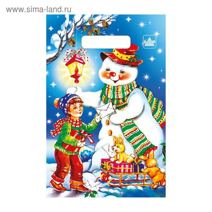 """Пакет""""Новогодняя почта"""" полиэтиленовый, с вырубной ручкой, 20х30 см, 30 мкм"""
