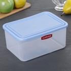 Контейнер пищевой 2 л, цвет голубой