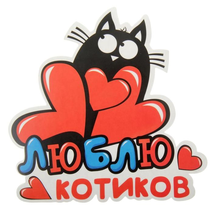 Я люблю тебя котик мой картинки с надписями, молодости картинки
