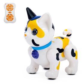 Робот радиоуправляемый, интерактивный «Кот», русское озвучивание, световые эффекты, цвета МИКС