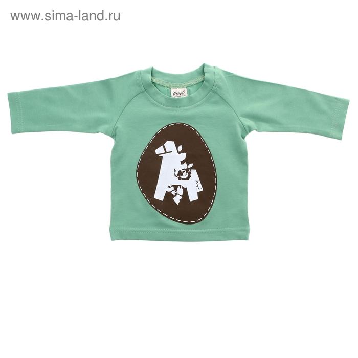 """Детская футболка """"Лошадка"""" с длинными рукавами, рост 68 см, цвет светло-зеленый"""