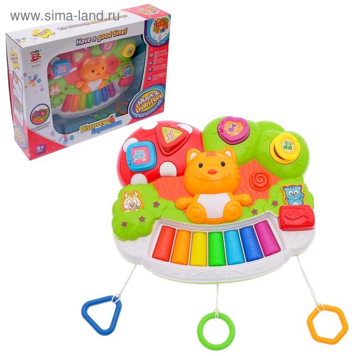 Музыкальная игрушка-пианино «Забавный котёнок», со световыми эффектами, БОНУС - книжка «Игры и занятия на пианино»