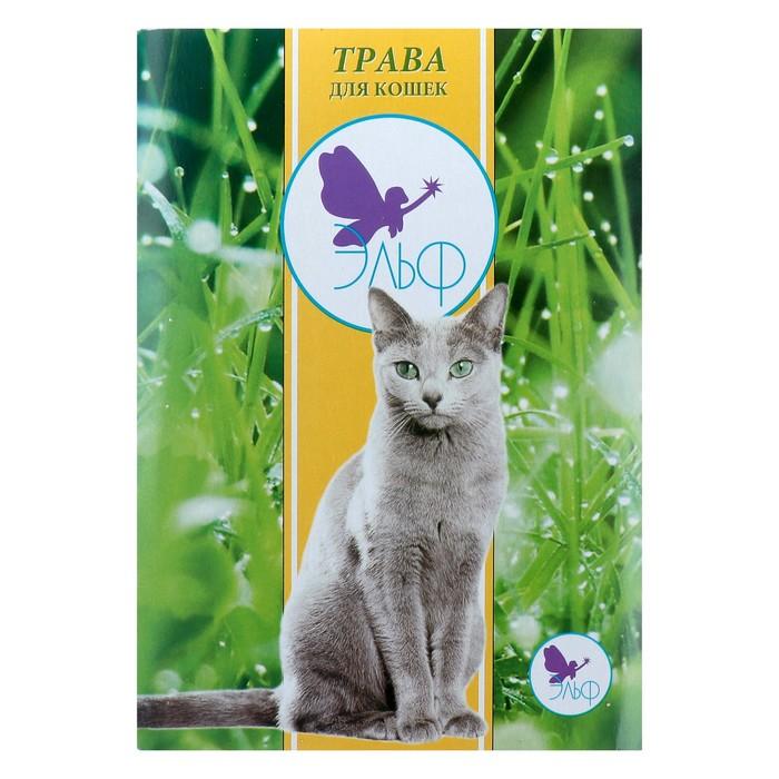 """Травка """"Эльф"""" для кошек, большой контейнер"""