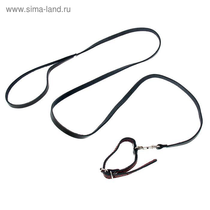 Комплект кожаный, ошейник 25 х 1,2 см и поводок 140 х 0,8 см, микс