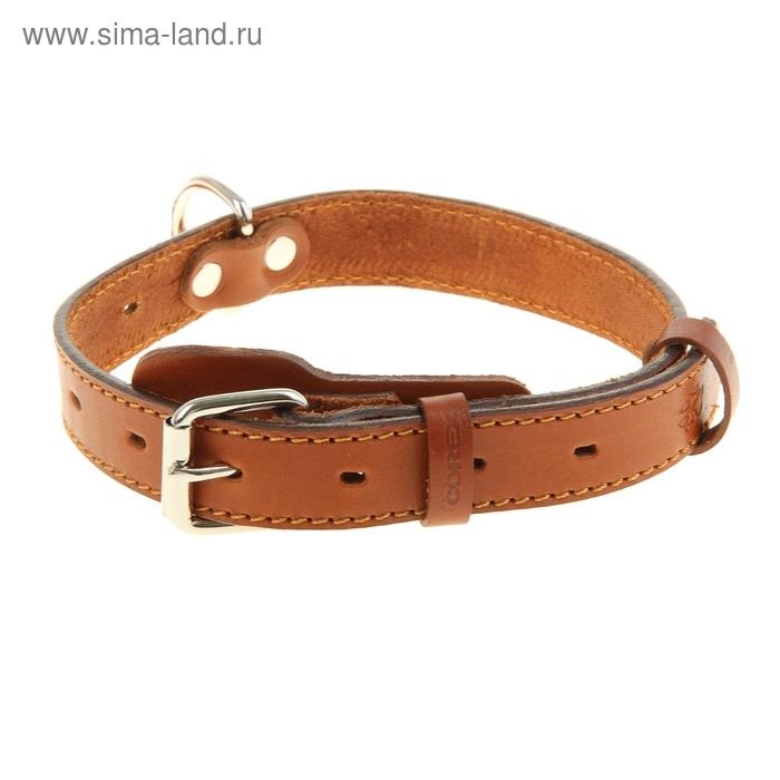 Ошейник кожаный, однослойный, 2,5 см х 55 см, с выносным кольцом, безразмерный, микс