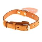 Ошейник кожаный, однослойный, 2 см х 50 см, с выносным кольцом, безразмерный, микс