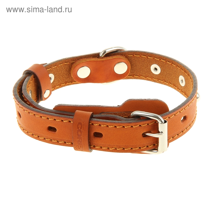 Ошейник кожаный, однослойный, 2 см х 45 см, с выносным кольцом, украшенный, микс
