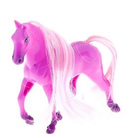 "Horse ""rose"" MIX"