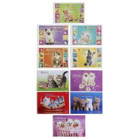 Альбом для рисования А4, 24 листа на гребне «Милые котята» обложка картон 185 г/м2, блок офсет 100 г/м2, с перфорацией на отрыв, 5 видов, МИКС