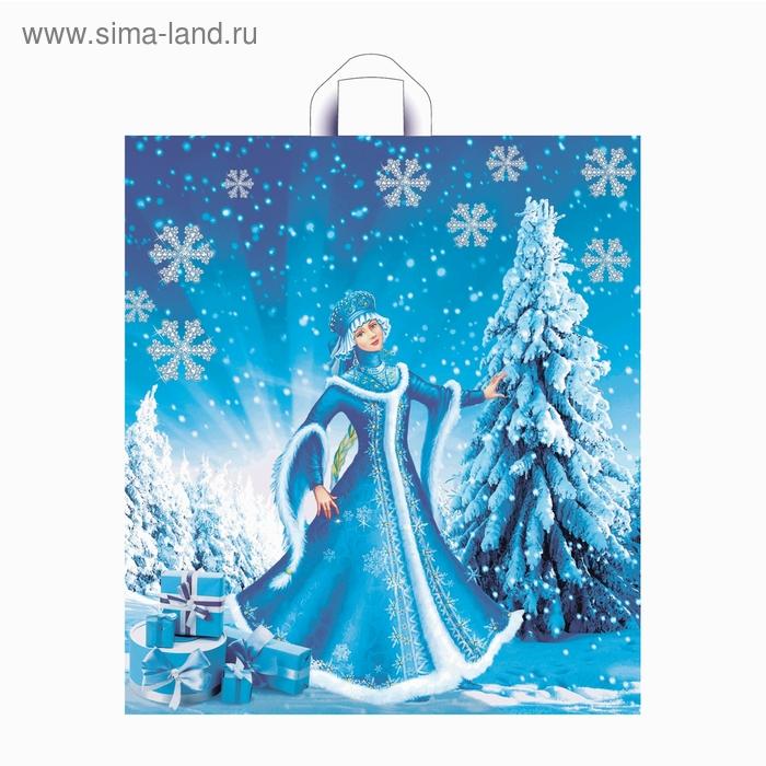 """Пакет """"Зимняя краса"""" полиэтиленовый, с петлевой ручкой, 40х43,5 см, 38 мкм"""