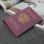 """Обложка для паспорта """"Герб"""", сиреневый флотер"""
