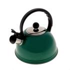 """Чайник """"Элит"""", макс. объем 2 л, со свистком, фиксированная ручка, цвет зеленый"""