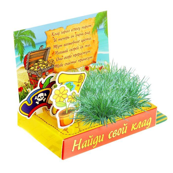 """Открытка-растущая трава """"Найди свой клад"""""""