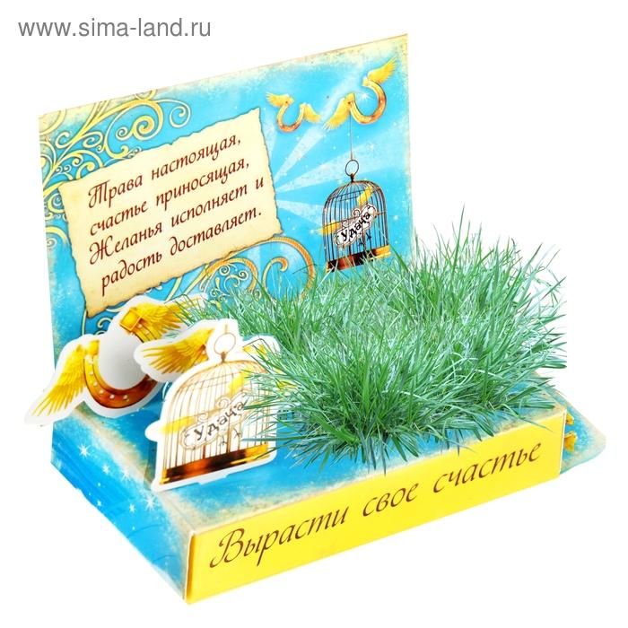 """Открытка-растущая трава """"Вырасти свое счастье"""""""