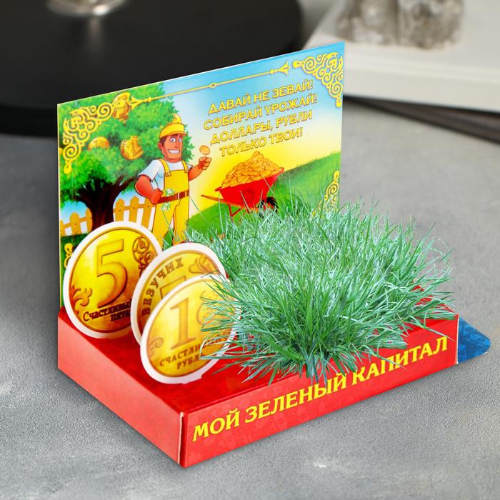 """Открытка с растущей травой """"Мой зеленый капитал"""""""