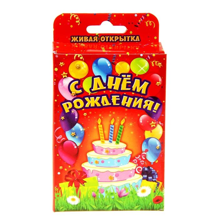 Живая открытка на день рождения заказать