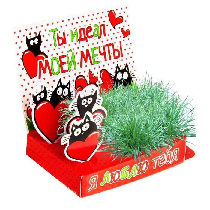"Открытка-растущая трава ""Я люблю тебя"""