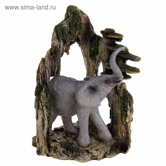 """Сувенир """"Африканский слон в пещере"""""""