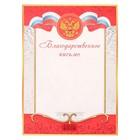 Благодарственное письмо, Универсальное, красная, серебряная рамка
