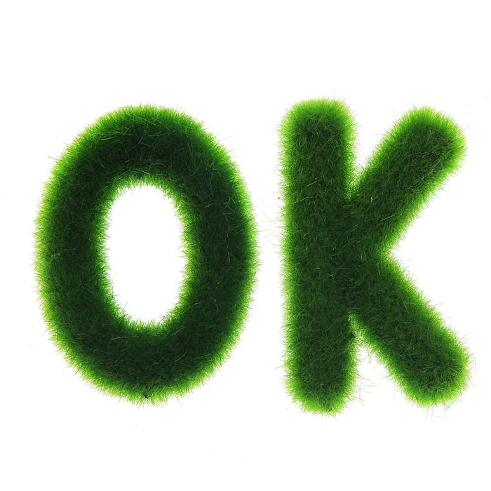 """Магнит топиарий """"Травка OK"""""""