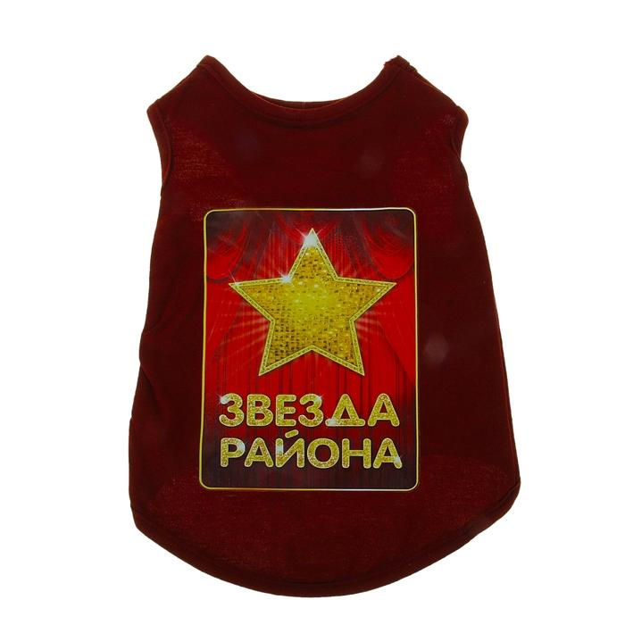 "Футболка ""Звезда района"", размер S (длина спины 26 см, обхват груди 37 см)"