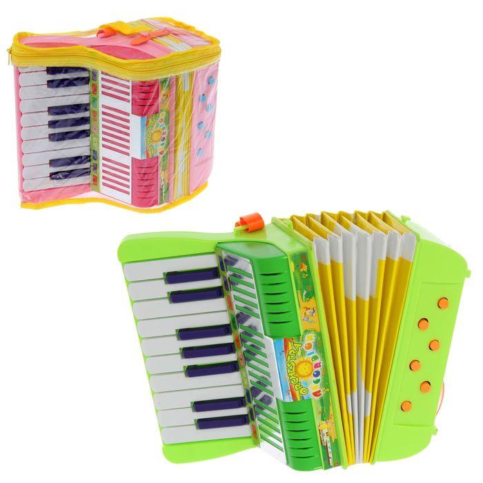 Музыкальная игрушка гармонь «Весёлые нотки», 17 клавиш, МИКС