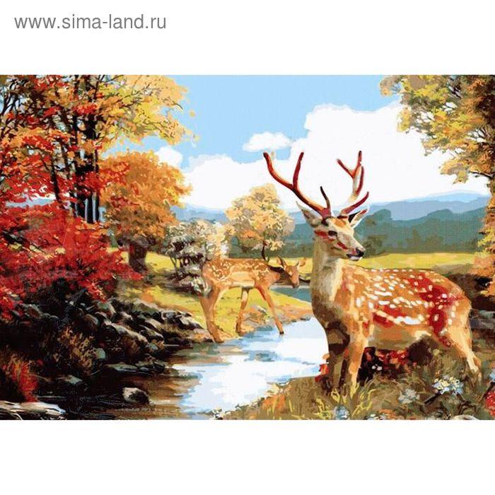 """Роспись по холсту """"В лесу"""" по номерам с красками по 3 мл + кисти + инструкция + крепеж"""