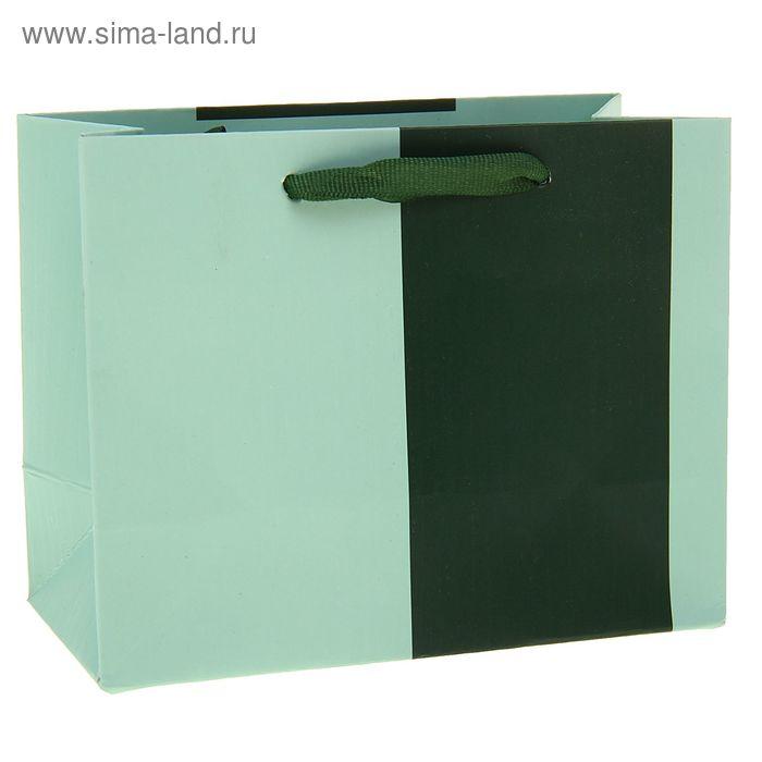 """Пакет ламинированный """"Зеленая вставка"""""""