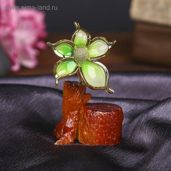 """Денежное дерево """"Цветок"""", цвет зелёный"""