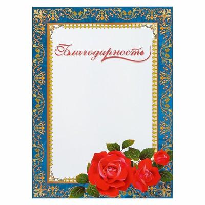 """Благодарность """"Универсальная"""", бирюзовая  рамка, цветы"""