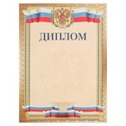 Диплом Универсальный, символика РФ, золотая рамка