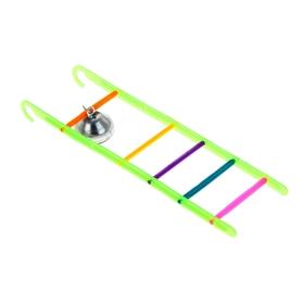 Игрушка для птиц лестница с колокольчиком, микс цветов