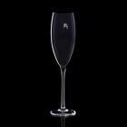 """Бокал для шампанского """"Мечта"""", черный, 330мл - фото 308062709"""