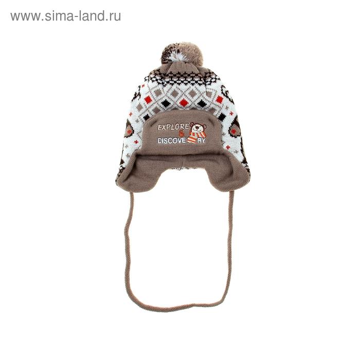 Шапка дет.зимняя Дискавери, объем головы 46-48см (1-2года), цвет коричневый