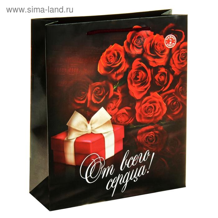 Пакет подарочный вертикальный «Презент от всего сердца», ML 23 х 27 х 8 см