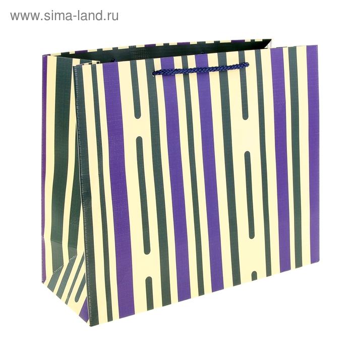 """Пакет ламинированный """"Пунктир"""", полоска зеленая"""
