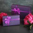 """Набор коробок 2 в 1 """"Горошек"""", фиолетовый, 21 х 13,5 х 5 - 16,5 х 9,5 х 4,5 см"""