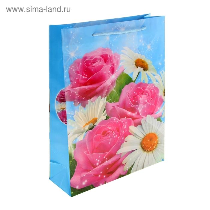 """Пакет ламинированный """"Ромашки и розы"""""""
