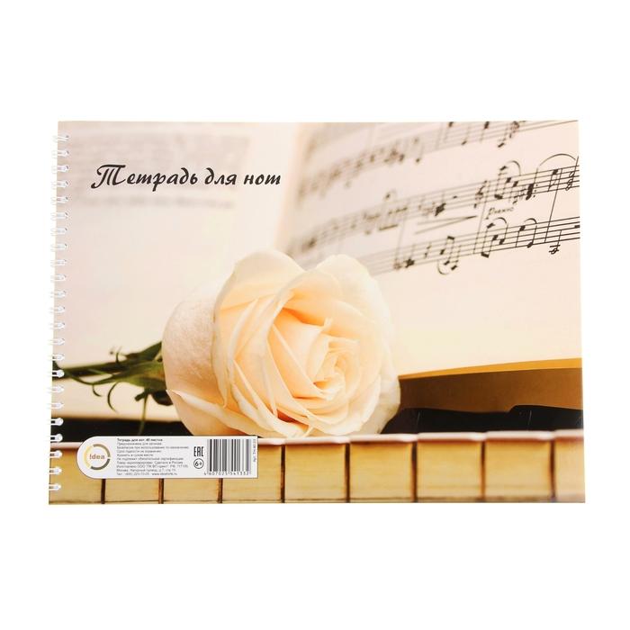 Тетрадь для нот А4, 40 листов на гребне, горизонтальная