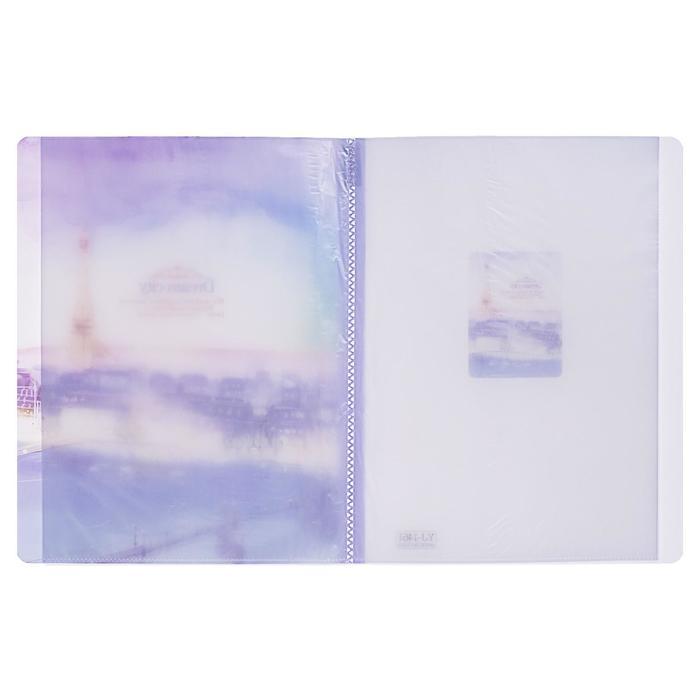 Папка, формат А4, с 30 прозрачными файлами, пластик, «Города», МИКС - фото 499306586