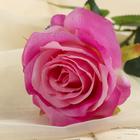 """Цветок искусственный """"Роза с каплями"""" цвет фуксии - фото 1692528"""