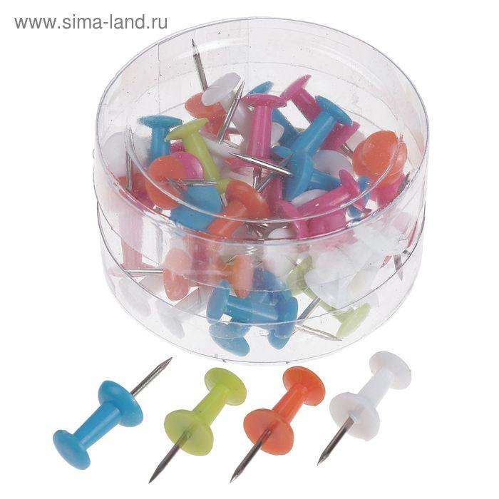 Кнопки силовые цветные 40шт в пластиковой коробке