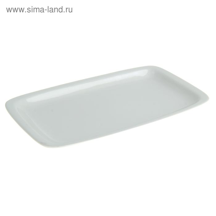 Блюдо прямоугольное 24,5х14,5 см