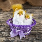 """Fluffy """"Kittens in a basket"""", MIX colors"""